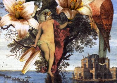 Romantici rapimenti